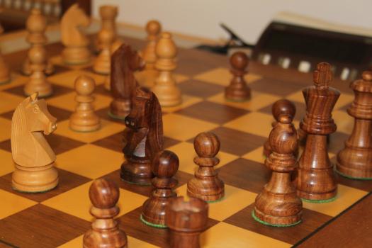 skakbrikker