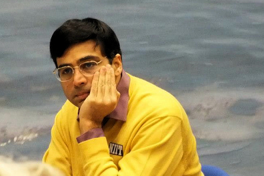 anand jan2013